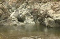 Cuentos verdes: Monitoreo Laguna de Sonso