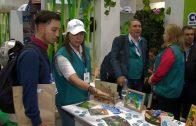 Cuentos verdes: Gestión Ambiental CVC en Fima