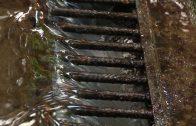 Cuentos verdes: Predio Acueducto Bellafuente