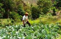 siembra-chef-y-agricultores
