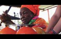 Autonomías Territoriales: Soberanía alimentaria