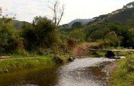 Cuentos verdes: Avances ARA Pescador