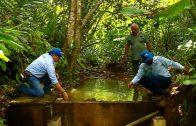 Cuentos verdes: Acueducto Miravalles