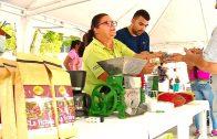 Cuentos verdes: Feria agroecológica La Victoria