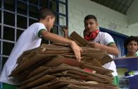 Cuentos verdes: PRAE I.E. Leocadio Salazar