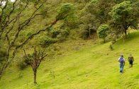 Cuentos verdes: Conservación Predio El Pailón