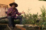 Cuentos verdes: Proyecto Ecobarrios